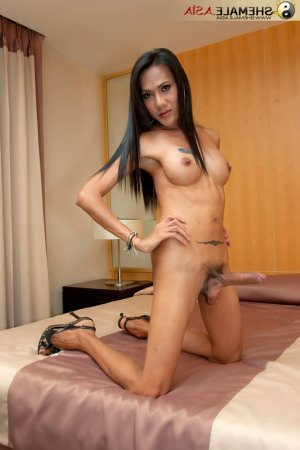 Coumba ladyboy independent escort in Norton Shores